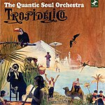 Quantic Soul Orchestra Tropidélico