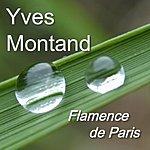 Yves Montand Flamence De Paris