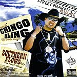 Chingo Bling Souther Flows, Vol.1: From Texas To Florida (Parental Advisory)