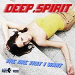 Deep Spirit The One That I Want (12-Track Maxi-Single)