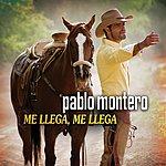 Pablo Montero Me LLega, Me Llega (Single)