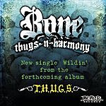 Bone Thugs-N-Harmony Wildin' (Single)