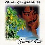 Garnett Silk Nothing Can Divide Us