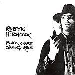 Robyn Hitchcock Black Snake Diamond Role