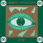 Robyn Hitchcock Eye