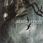 Birds Of Prey Weight Of The Wound