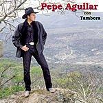 Pepe Aguilar Pepe Aguilar Con Tambora