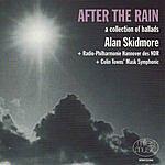 Alan Skidmore After The Rain