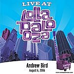 Andrew Bird Live At Lollapalooza: Andrew Bird - August 6, 2006 (Single)
