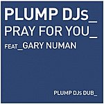 Plump DJ's Pray For You/How Much Is Enough