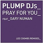 Plump DJ's Pray For You (2-Track Single)