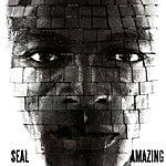 Seal Amazing (4-Track Maxi-Single)