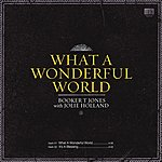 Booker T. Jones What A Wonderful World (2-Track Single)