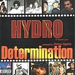Hydro Determination (Parental Advisory)