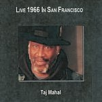 Taj Mahal Live In San Francisco '66