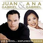 Juan Gabriel Los Gabriel... Simplemente Amigos