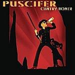 Puscifer Cuntry Boner/World Up My Ass