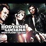 Bodyrox What Planet You On? (Radio Edit) (Single)
