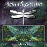Amethystium Odonata