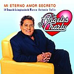 Los Angeles De Charly Mi Eterno Amor Secreto