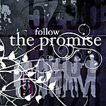 Promise Follow