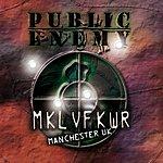 Public Enemy Revolverlution Tour - Manchester 2003 (Live)