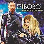 DJ Bobo Because Of You (5-Track Maxi-Single)