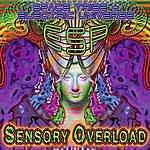 Esp Sensory Overload