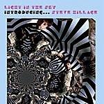 Steve Hillage Light In The Sky: Introducing...Steve Hillage