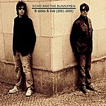 Echo & The Bunnymen B-Sides And Live: 2001-2005