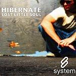 Hibernate Lost Little Soul (2-Track Single)