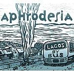 Aphrodesia Lagos By Bus