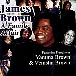 James Brown A Family Affair (Rare And Unreleased Tracks)