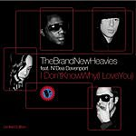 The Brand New Heavies I Don't Know Why I Love You (Kenny Dope Remix Radio Edit)