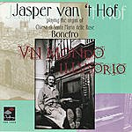 Jasper Van't Hof Un Mondo Illusorio