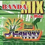 Banda Maguey Banda Mix Y Más