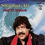 Shaukat Ali Saif Ul Malook, Part 1