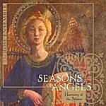 Rose Seasons Of Angels