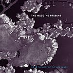 The Wedding Present The Best Of The RCA Years