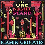 The Flamin' Groovies One Night Stand