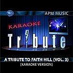 Faith Hill Karaoke Tribute: A Tribute To Faith Hill, Vol.3