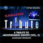 Montgomery Gentry Karaoke Tribute: A Tribute To Montgomery Gentry, Vol.1