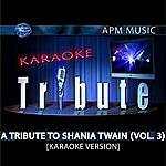 Shania Twain Karaoke Tribute: A Tribute To Shania Twain, Vol.3