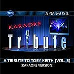 Toby Keith Karaoke Tribute: A Tribute To Toby Keith, Vol.3
