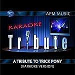Trick Pony Karaoke Tribute: A Tribute To Trick Pony