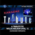 Willie Nelson Karaoke Tribute: A Tribute To Willie Nelson, Vol.1