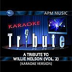 Willie Nelson Karaoke Tribute: A Tribute To Willie Nelson, Vol.2