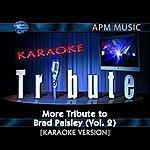 Brad Paisley Karaoke Tribute: More Tribute To Brad Paisley, Vol.1