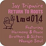 Jay Tripwire Return To Roots