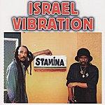 Israel Vibration Stamina